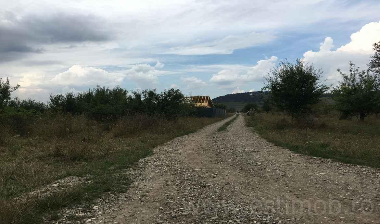 Teren de vanzare in Sanpetru Livada